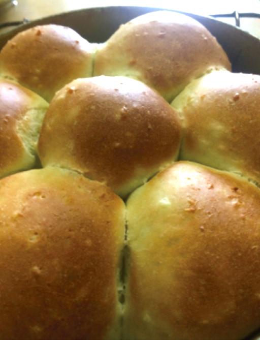 藍の靑汁入りほかほかパン